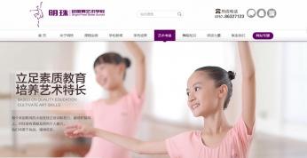 明珠芭蕾舞seo优化案例